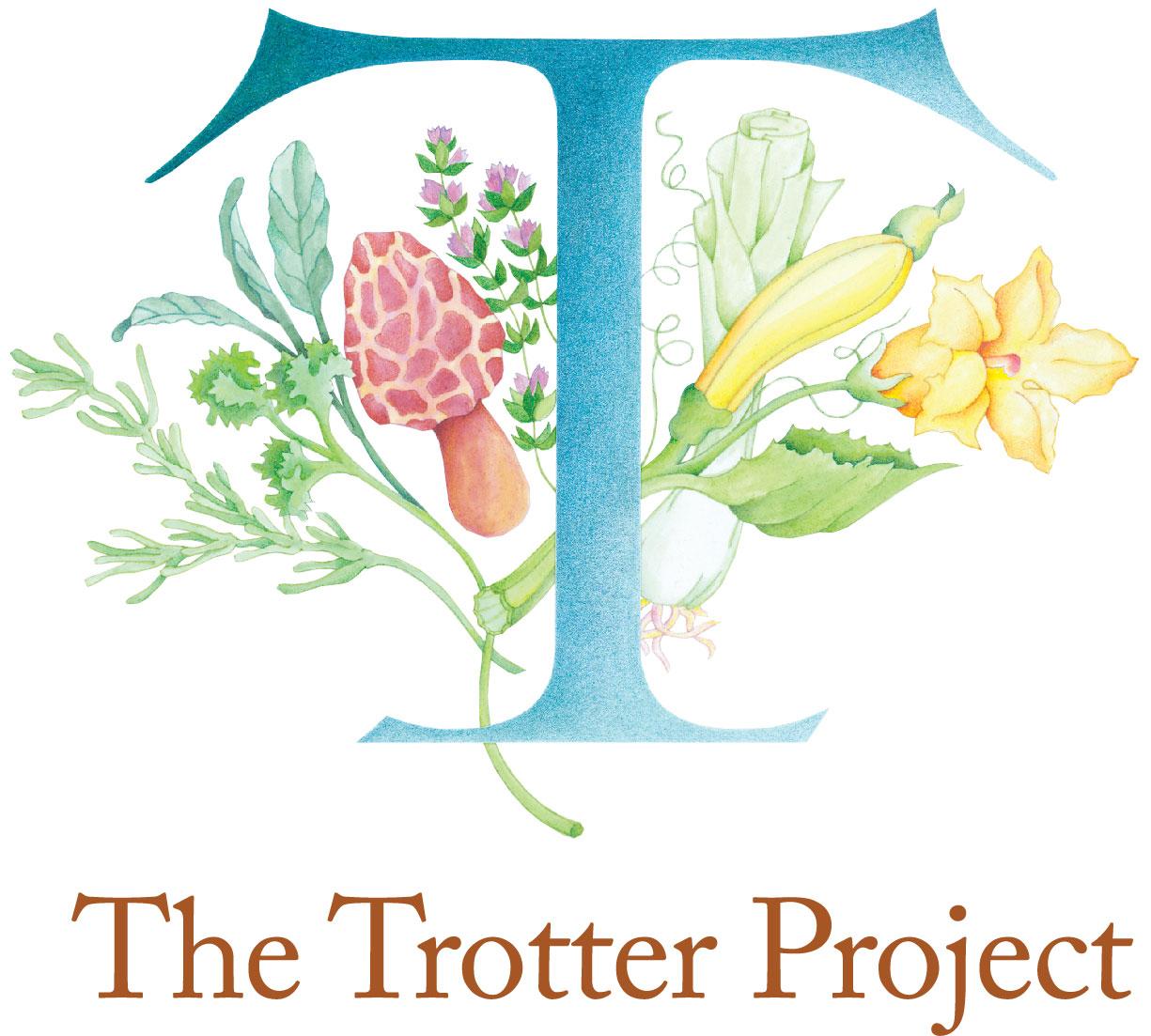 TTP_logo (002)