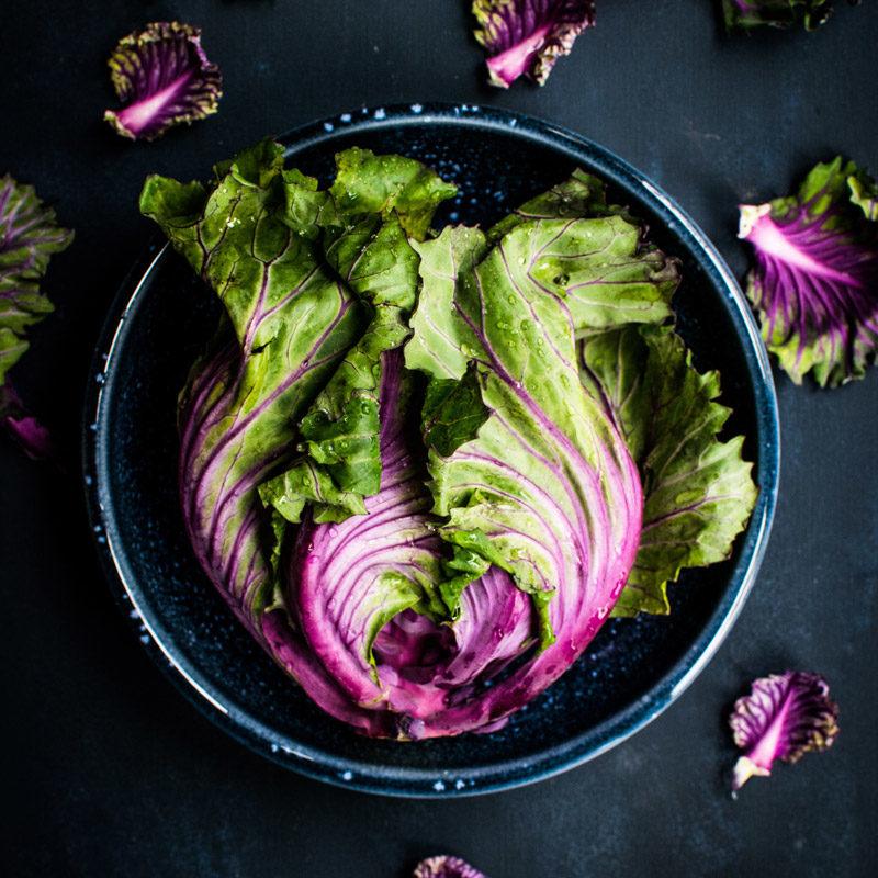 Stock_lettuce